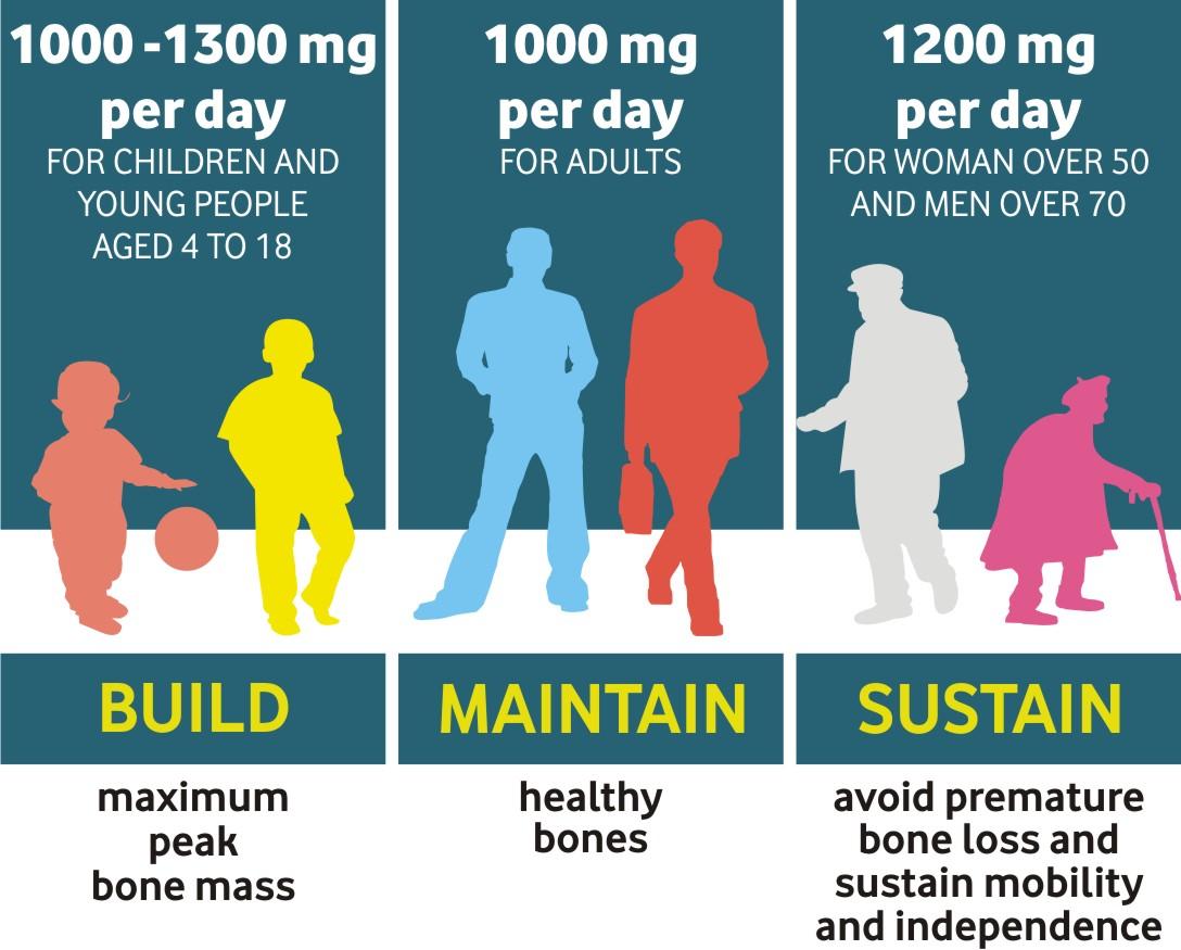 Calcium life stages