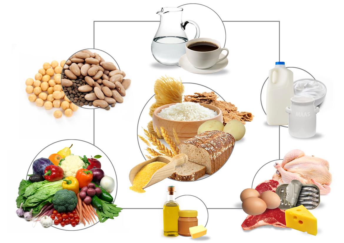 SA - Food guide